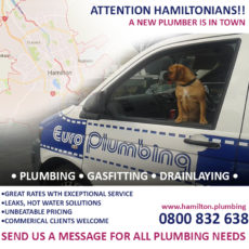 Attention Hamiltonians! A New Plumber Is In Town!